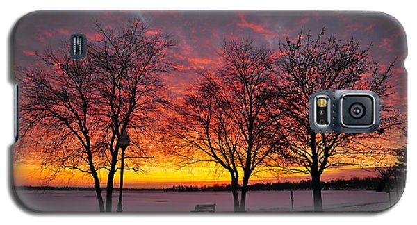 Galaxy S5 Case featuring the photograph December Sunset by Terri Gostola