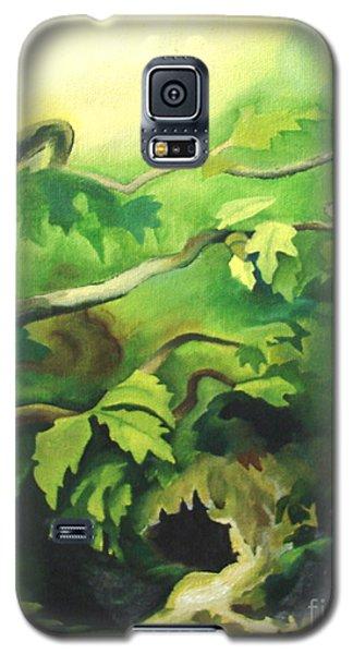 Deep Forest Galaxy S5 Case by Joseph Hawkins