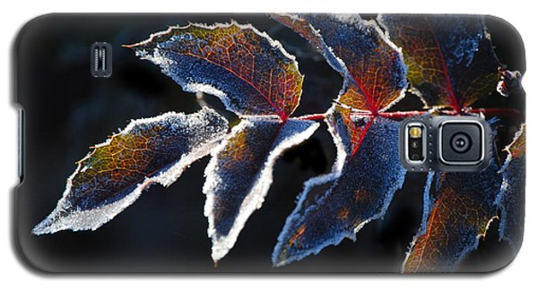 Galaxy S5 Case featuring the photograph Deep Frost by Janis Knight