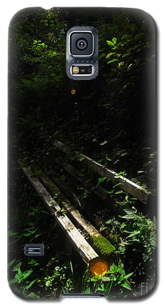 Deep In The Woods Galaxy S5 Case by Andy Prendy