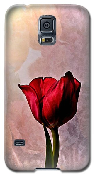 Deep Red Tulip On Pale Tulip Background Galaxy S5 Case