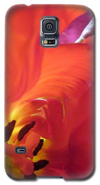 Deepest Galaxy S5 Case