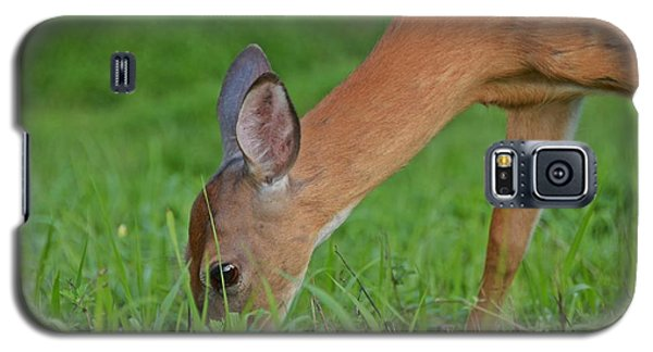 Deer 25 Galaxy S5 Case
