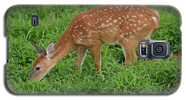 Deer 46 Galaxy S5 Case
