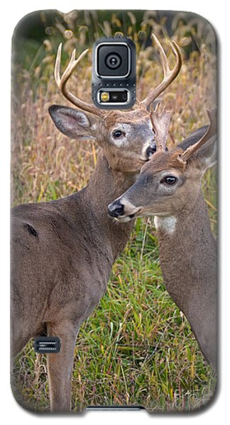 Deer 48 Galaxy S5 Case