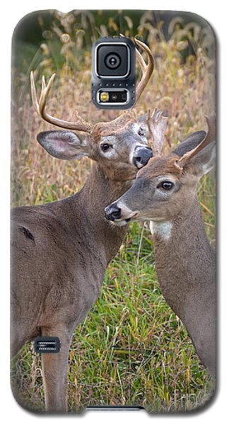 Deer 49 Galaxy S5 Case
