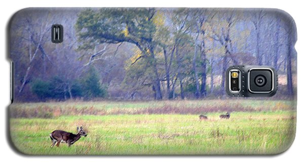 Deer At Cades Cove Galaxy S5 Case by Kenny Francis