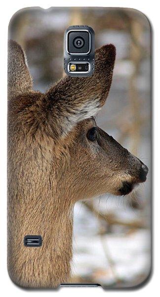 Deer Day Dreamer Galaxy S5 Case