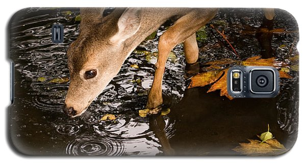 Galaxy S5 Case featuring the photograph Deer Fawn Bobbing For Apples by Peggy Collins