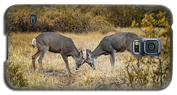 Deer Games Galaxy S5 Case by Janis Knight