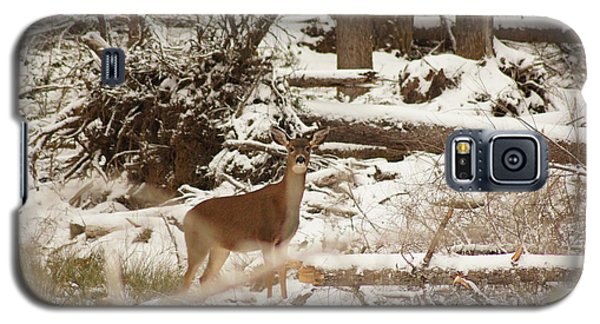 Deer In Snow Galaxy S5 Case