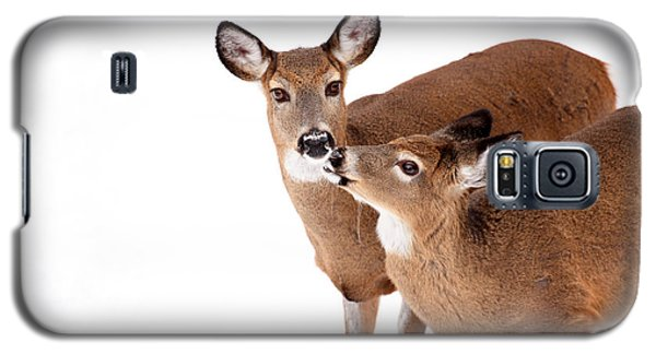 Deer Kisses Galaxy S5 Case by Karol Livote