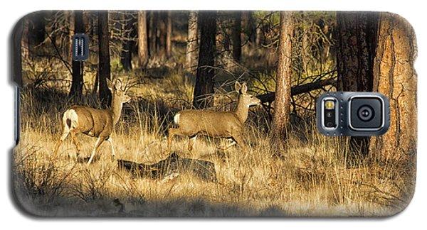 Deer On The Run Galaxy S5 Case