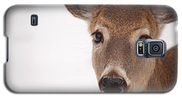 Deer Talk Galaxy S5 Case by Karol Livote