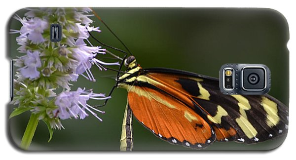 Galaxy S5 Case featuring the photograph Delicacy by Mary Zeman