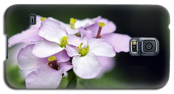 Galaxy S5 Case featuring the photograph Delicate Beauty by Denise Pohl