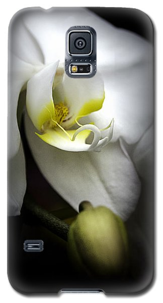 Delicate Exotic Orchid Galaxy S5 Case