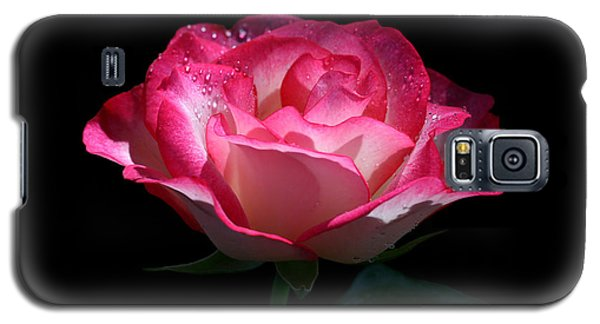 Galaxy S5 Case featuring the photograph Delicate Fountain by Doug Norkum