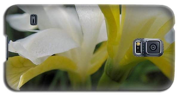 Delicate Iris Galaxy S5 Case