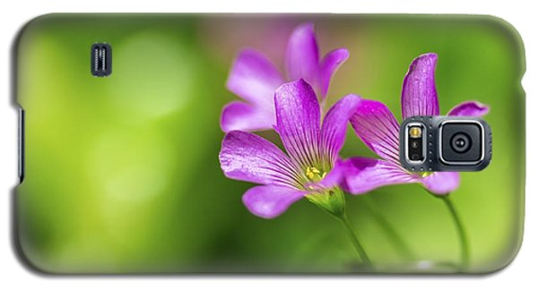 Delicate Purple Wildflowers Galaxy S5 Case by Leigh Anne Meeks