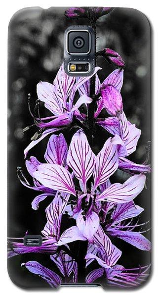 Delicate Violet Galaxy S5 Case