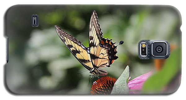 Galaxy S5 Case featuring the photograph Delicate Wings by Yumi Johnson