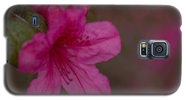 Delightful Azalea Galaxy S5 Case