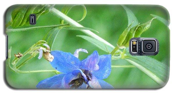 Delphinium Blossom Galaxy S5 Case