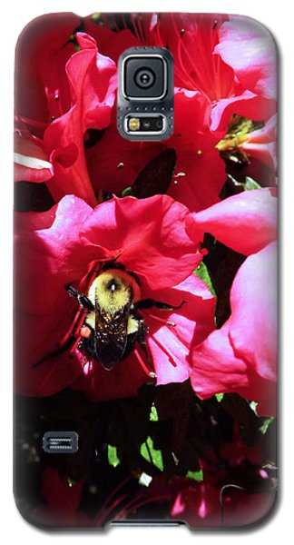 Galaxy S5 Case featuring the photograph Delving Into Sweetness by Robyn King