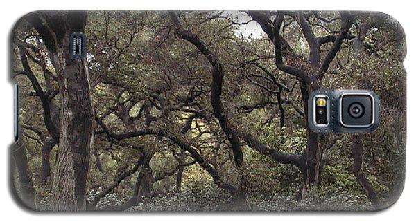 Descanso Oaks 3 Galaxy S5 Case
