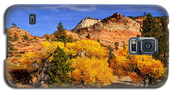 Galaxy S5 Case featuring the photograph Desert Autumn by Greg Norrell