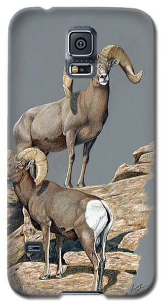 Desert Bighorn Rams Galaxy S5 Case