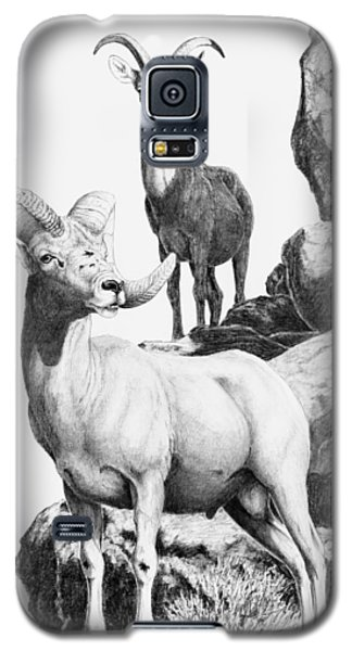 Desert Bighorns Galaxy S5 Case