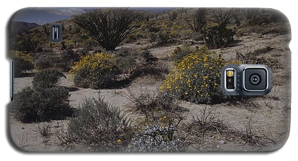 Desert Canyon And Wildflowers Galaxy S5 Case