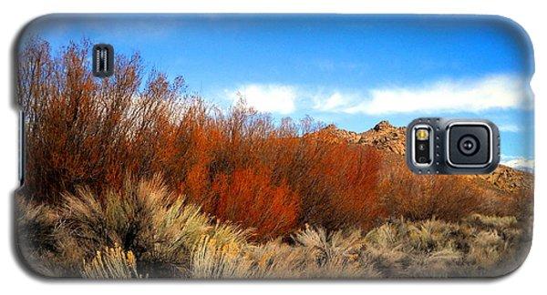 Desert Colors Galaxy S5 Case by Marilyn Diaz
