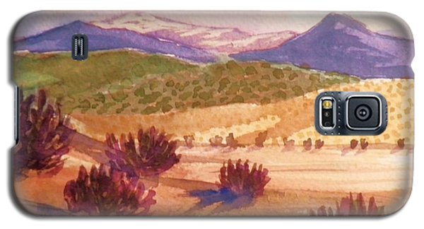 Galaxy S5 Case featuring the painting Desert Contrasts by Suzanne McKay