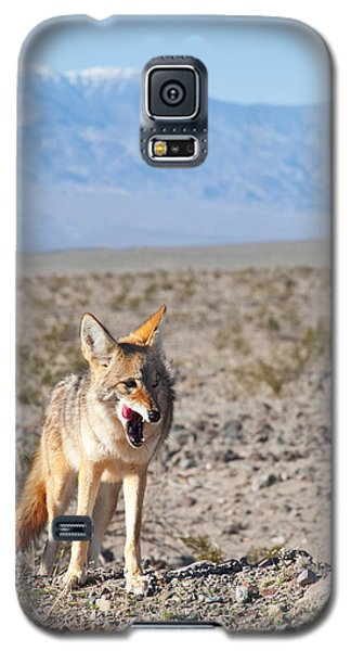 Desert Coyote Galaxy S5 Case