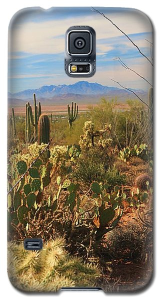Desert Day Galaxy S5 Case