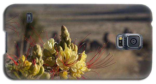 Desert Flowers Galaxy S5 Case by Amber Kresge