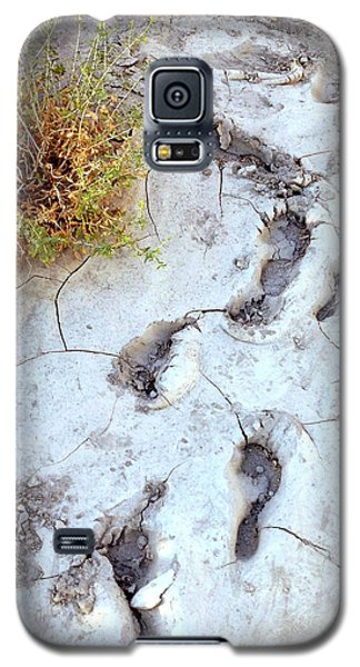 Galaxy S5 Case featuring the painting Desert Footprints by Dan Redmon