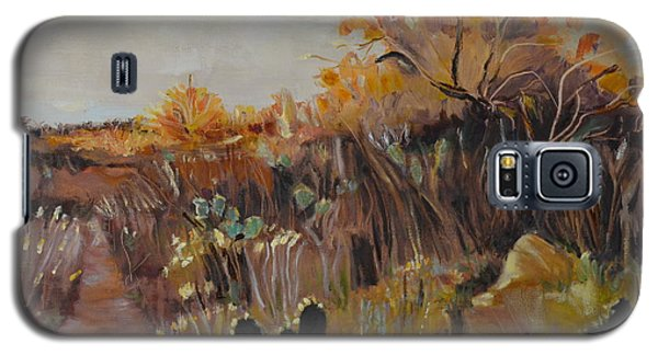 Galaxy S5 Case featuring the painting Desert Landscape by Julie Todd-Cundiff