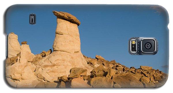 Desert Rock Garden Galaxy S5 Case