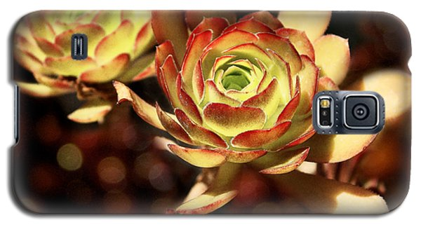 Desert Roses Galaxy S5 Case