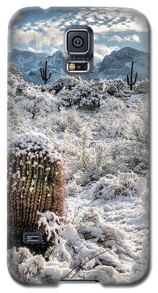 Desert Snow Galaxy S5 Case