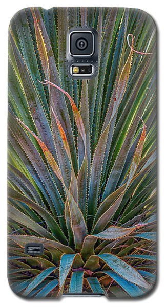 Galaxy S5 Case featuring the photograph Desert Spoon by Beverly Parks