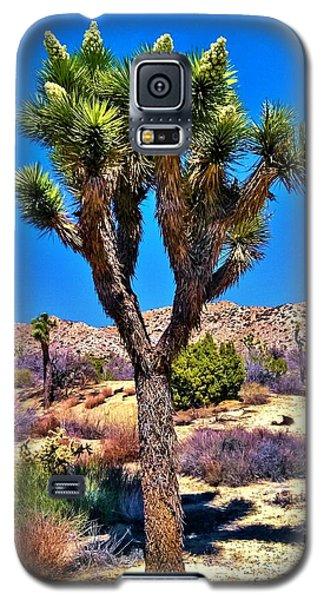 Desert Spring Galaxy S5 Case by Angela J Wright