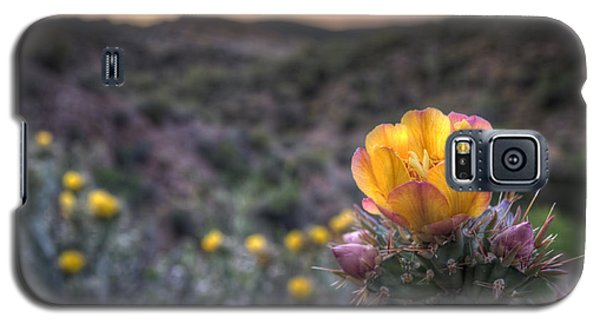 Desert Sunset Blossom Galaxy S5 Case