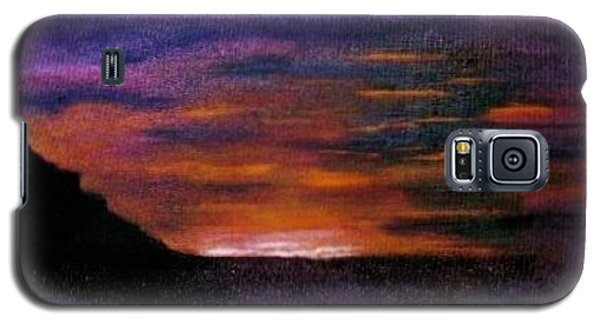 Desert Sunset Galaxy S5 Case by Valorie Cross