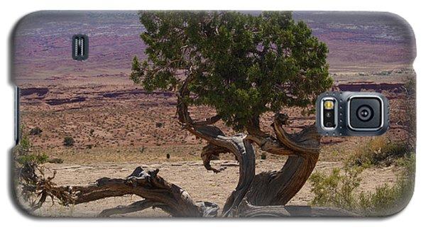Desert Tree Galaxy S5 Case