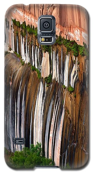 Desert Varnish Galaxy S5 Case
